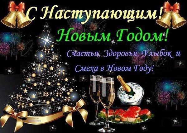 s_nastupaushim_novim_2011_godom_vas_druzja_schatja_lubvi_udachi_vo_vsemvam_v_novom_godu.jpg