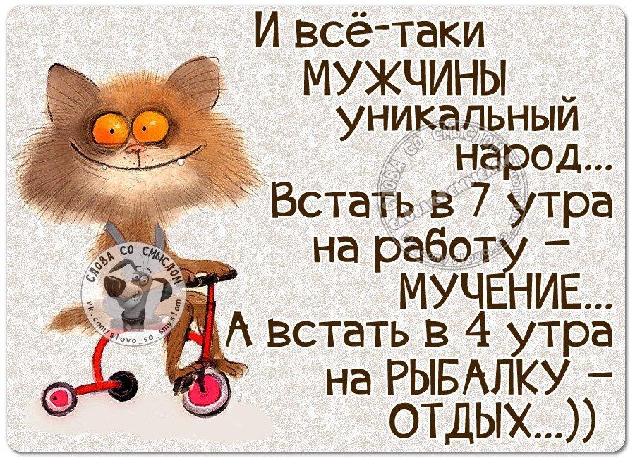 https://novfishing.ru/uploads/monthly_2017_01/MYHcgoK-2Ok.jpg.33708896fc5a21671248a5db36e946ab.jpg