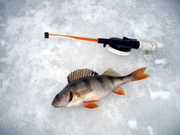 зимняя-рыбалка.jpg