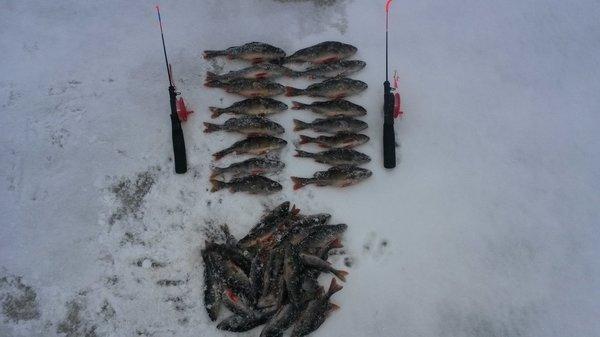Рыбалка 22 декабря 2017 003.jpg