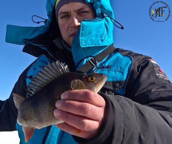 зима рыба  (30 of 1).jpg