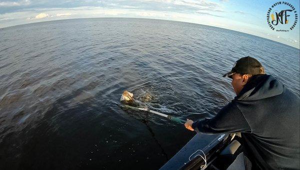 Рыбалка 2018 (201 of 1).jpg