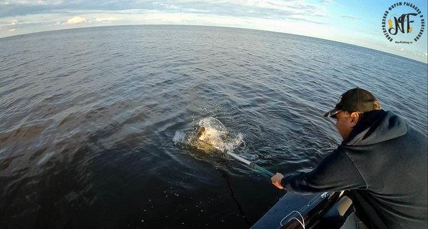 Рыбалка 2018 (200 of 1).jpg