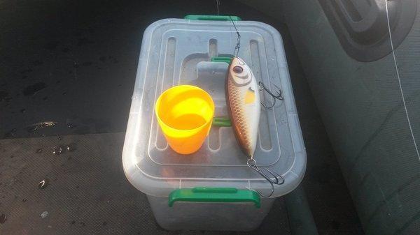 Супер рыбалка на Джерки и на крупную резину 18октября 2018 012.jpg