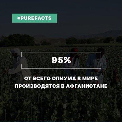 RoLdnKV_STA.jpg