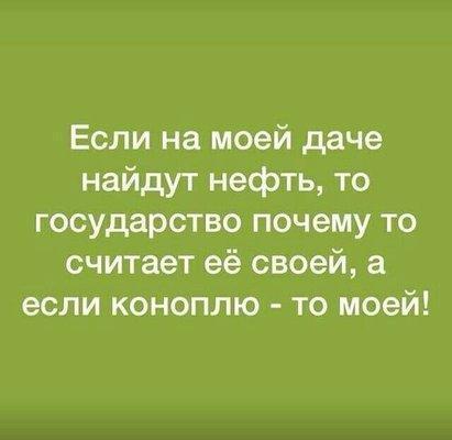 UID65237_1549312335_89.jpg