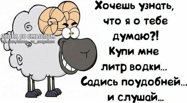 UID5566_1552036254_68.jpg
