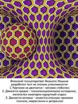 UID14475_1551276279_32.jpeg