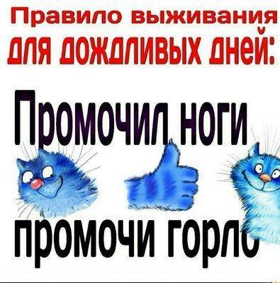 UID430676_1564080210_4.jpeg