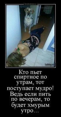 UID532070_1568546649_22.jpeg