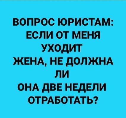 UID506417_1572608788_18.jpeg