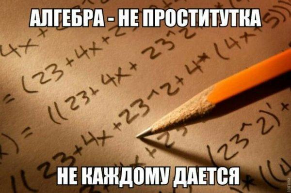 UID8028_1579948754_92.jpeg