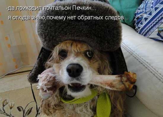 Приходил Печкин.jpg