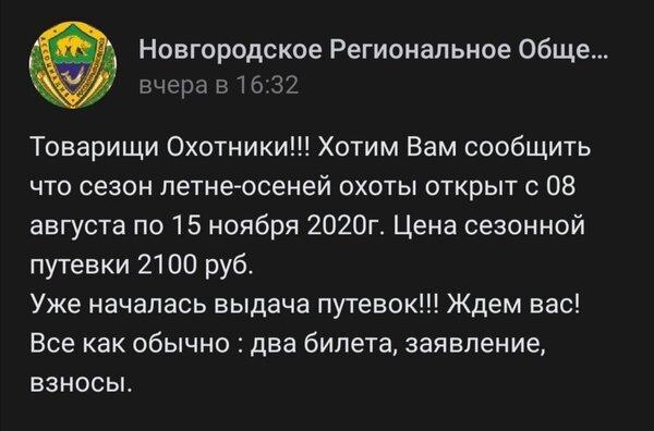 Screenshot_20200728_090505.jpg